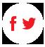 Social Media Widgets